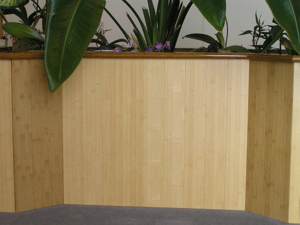Brilliant Bamboo Wainscoting 600 x 449 · 46 kB · jpeg